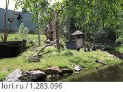 Зоопарк Кольморден. Стоковое фото, фотограф Татьяна Шишкова / Фотобанк Лори