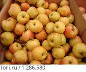 Яблочки. Стоковое фото, фотограф Аврам / Фотобанк Лори