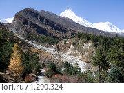 Купить «Непал. Окрестности горы Манаслу.», фото № 1290324, снято 31 октября 2009 г. (c) Михаил Ворожцов / Фотобанк Лори