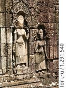 Храмовый комплекс Ангкор. Храм Та Пром. Камбоджа. Стоковое фото, фотограф Daria / Фотобанк Лори