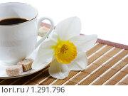 Утренняя чашка кофе. Стоковое фото, фотограф Владислав Иванов / Фотобанк Лори