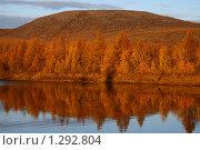 Осенний пейзаж. Якутия. Стоковое фото, фотограф Анна Зеленская / Фотобанк Лори