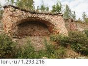 Купить «Старая стена крепости Орешек. Шлиссельбург», фото № 1293216, снято 19 августа 2009 г. (c) Евгений Батраков / Фотобанк Лори
