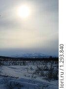 Купить «Зимнее солнце над тундрой», фото № 1293840, снято 21 марта 2009 г. (c) Алена Потапова / Фотобанк Лори