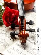 Купить «Скрипка и роза на нотной тетради», фото № 1294184, снято 27 августа 2009 г. (c) Мельников Дмитрий / Фотобанк Лори