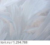 Морозный узор на стекле. Стоковое фото, фотограф Ольга Полякова / Фотобанк Лори