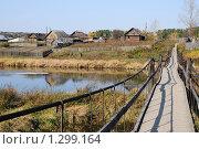 Купить «Река Чусовая. Подвесной мост», эксклюзивное фото № 1299164, снято 7 октября 2008 г. (c) Wanda / Фотобанк Лори