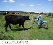 Купить «Доярка с коровой черной масти», фото № 1301672, снято 11 июля 2007 г. (c) Галина  Горбунова / Фотобанк Лори