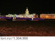 Купить «Вид на здание Кунсткамеры зимней ночью», фото № 1304900, снято 16 декабря 2009 г. (c) Александр Секретарев / Фотобанк Лори