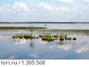 Рыбалка на озере Разлив. Стоковое фото, фотограф Виталий Фурсов / Фотобанк Лори