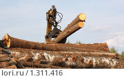 Купить «Заготовка древесины», фото № 1311416, снято 16 августа 2009 г. (c) Илья Телегин / Фотобанк Лори