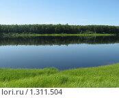 Лето на реке Печоре. Стоковое фото, фотограф Вера Попова / Фотобанк Лори