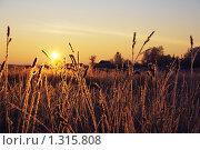 Морозный рассвет. Стоковое фото, фотограф Сергей Веряскин / Фотобанк Лори