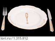 Купить «Концептуальная идея о еде», фото № 1315812, снято 9 декабря 2009 г. (c) Черников Роман / Фотобанк Лори