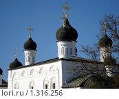 Купить «Троицкий собор Астраханского Кремля», фото № 1316256, снято 9 ноября 2008 г. (c) Татьяна Богатова / Фотобанк Лори