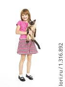 Купить «Девочка с сиамской кошкой на белом фоне», фото № 1316892, снято 22 декабря 2009 г. (c) Лисовская Наталья / Фотобанк Лори
