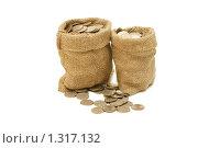 Купить «Мешки с монетами», фото № 1317132, снято 22 октября 2009 г. (c) Воронин Владимир Сергеевич / Фотобанк Лори