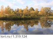 Осенний пейзаж, Салтыковка (2009 год). Стоковое фото, фотограф Дмитрий Неумоин / Фотобанк Лори