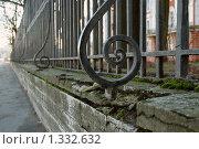 Решетка (2008 год). Стоковое фото, фотограф Омельян Светлана / Фотобанк Лори