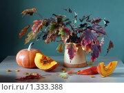 Купить «Натюрморт с тыквой», фото № 1333388, снято 22 сентября 2009 г. (c) Julia Ovchinnikova / Фотобанк Лори