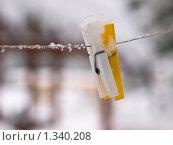 Купить «Прищепки (о нежности)», фото № 1340208, снято 2 января 2010 г. (c) Евдокимова Мария Борисовна / Фотобанк Лори
