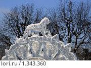 Купить «Ледяной тигр», эксклюзивное фото № 1343360, снято 3 января 2010 г. (c) Щеголева Ольга / Фотобанк Лори