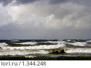 Купить «Шторм», фото № 1344248, снято 4 октября 2009 г. (c) Анна Лурье / Фотобанк Лори