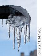 Купить «Сосулька», фото № 1347960, снято 6 января 2010 г. (c) Алексей Букреев / Фотобанк Лори