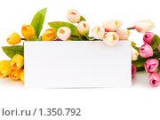 Букет тюльпанов и пустая открытка. Стоковое фото, фотограф Elnur / Фотобанк Лори