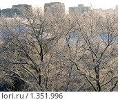 Зимний пейзаж - солнечный денек. Стоковое фото, фотограф Вячеслав Маслов / Фотобанк Лори