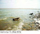Прозрачная волна. Стоковое фото, фотограф Вера Сидиропуло / Фотобанк Лори