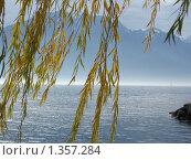 Женевское озеро (2009 год). Стоковое фото, фотограф Виктор Пивоваров / Фотобанк Лори