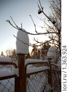 Дачный забор. Стоковое фото, фотограф Омельян Светлана / Фотобанк Лори