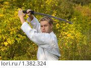 Купить «Восточные единоборства», фото № 1382324, снято 1 октября 2006 г. (c) Andrejs Pidjass / Фотобанк Лори