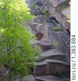 Купить «Красноярск, заповедник Столбы», фото № 1383884, снято 21 июня 2009 г. (c) Ольга Остроухова / Фотобанк Лори