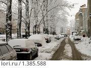Купить «Город в сугробах. Зимний Санкт-Петербург», эксклюзивное фото № 1385588, снято 16 января 2010 г. (c) Александр Алексеев / Фотобанк Лори