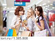 Купить «Шопинг», фото № 1385808, снято 29 декабря 2009 г. (c) Raev Denis / Фотобанк Лори