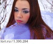 Купить «Девушка в заснеженном парке», фото № 1390284, снято 27 декабря 2009 г. (c) Евдокимова Мария Борисовна / Фотобанк Лори