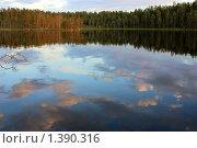 Отражение. Стоковое фото, фотограф Осиев Антон / Фотобанк Лори