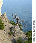 Крым поселок Новый свет (2008 год). Стоковое фото, фотограф Андрей Спирин / Фотобанк Лори