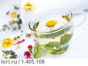 Купить «Травяной чай с ромашкой и мятой», фото № 1405108, снято 16 июня 2009 г. (c) Татьяна Емшанова / Фотобанк Лори