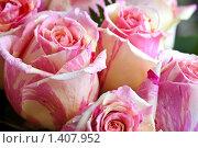 Купить «Букет роз», фото № 1407952, снято 23 января 2010 г. (c) Баевский Дмитрий / Фотобанк Лори
