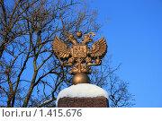 Герб России (2010 год). Стоковое фото, фотограф Natalisha / Фотобанк Лори
