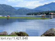 Купить «Берег Телецкого озера. Алтайский край», эксклюзивное фото № 1421848, снято 20 июля 2009 г. (c) Яна Королёва / Фотобанк Лори