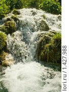 Купить «Водопад в лесу», фото № 1427988, снято 19 июня 2008 г. (c) Andrejs Pidjass / Фотобанк Лори