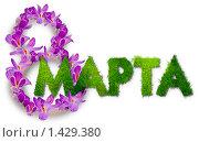 Надпись 8 марта из цветов и травы. Стоковое фото, фотограф Ирина Апарина / Фотобанк Лори
