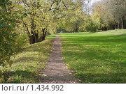 Купить «Тропинка в Измайловском парке», фото № 1434992, снято 8 октября 2009 г. (c) Николай Богоявленский / Фотобанк Лори
