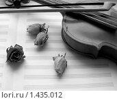 Скрипка. Стоковое фото, фотограф Алешечкина Елена / Фотобанк Лори