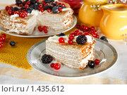 Купить «Кусок блинного пирога с голубикой, ежевикой и красной смородиной», эксклюзивное фото № 1435612, снято 27 января 2010 г. (c) Лисовская Наталья / Фотобанк Лори