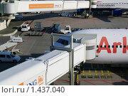 Купить «Самолет - гейт», фото № 1437040, снято 9 ноября 2009 г. (c) Мишурова Виктория / Фотобанк Лори